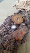 Frei schwebende echte Perle. Ca 12 mm.