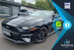 FORD Mustang 2,3l EcoBoost 2019 Autom Cabrio Leder