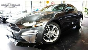FORD Mustang 2.3 Eco Boost Aut.Navi-Xenon-Leder-Alu19