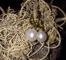 Ohrgehänge mit 2 tropfenförmige Perlen