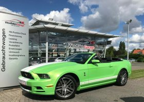 FORD Mustang GT 500 Shelby Optik 19