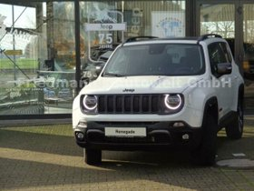 JEEP Renegade 2,0 MultiJet Trailhawk/Navi/6dTemp