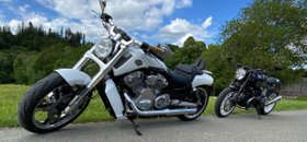 Traumhafte V-Rod Muscle ABS Top-Zustand