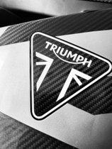 limit. Vollcarbon Daytona Moto2 **Sondergenehmigung für EZ bis 2022**
