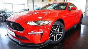 FORD Mustang 2.3 Eco Boost Aut.Navi-Xenon-Leder-Kam-